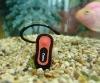 Beautiful Ourdoor Bluetooth Earphone