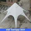 star kanopy tent for outdoor party in economical price