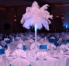 White Ostrich feather centerpiece kits for wedding party
