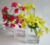3Pcs Rectangular Glass Vase