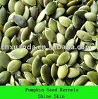Pumpkin seed Kernels Shine-skin