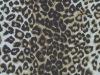 PET polyester spun bonded non woven fabric