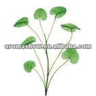 Asiatic Acid 95%; Centella Asiatica Extract; CAS 464-92-6