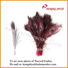 Wedding Decorations Peacock Feathers