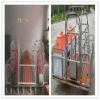 FLS Hot sale Sow Farrowing crate powder painting & hot-dip galvanized
