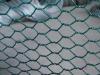 gal hexagonal mesh