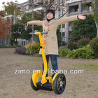 Electric Personal Transporter