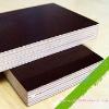 Poplar core film faced plywood