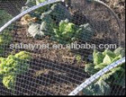 agricultural insect netting