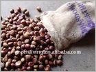 fresh chestnut (gunny bag)