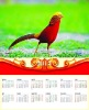 3d wall calendar 2013,pp/pet 3d picture/painting,home decorate