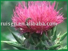 Top quality Milk Thistle Extract