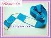 Crisscross Luggage Belt