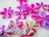 Plum blossom sequins