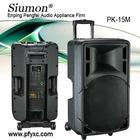 PK-15M Wireless speaker