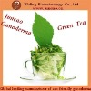 New products for 2012 Healthy Organic Ganoderma green tea