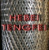 Stainless steel expanded metal mesh (25 YEARS EXPERIENCES)
