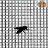 Mosquito Door & Iron Window Screens