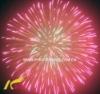 Fireworks Shell