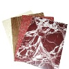 Fire Resistant Aluminium Composite Panel (fire ACP,building,fire proof material)