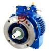 UD Series Industrial Mechanical Speed Variator