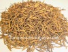used in food additives of Liquorice Root Extract