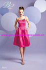 2010 year Hot selling Evening dress
