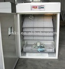 Automic chicken Egg Incubator 0086 15238020875