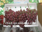hot sale!! 2012 new crop red grape