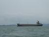 6450DWT Chemical/Oil Tanker