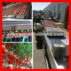 vegetable and fruit washing and grading machine 15224364350
