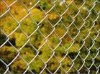 Strong Square Galvanized Chain Link Fence