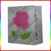 fashion paper bag