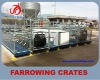 New type galvanized pipe pig farrowing crates