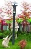 solar garden light/solar product