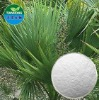 Pure Natural Saw Palmetto Extract /Fatty Acid