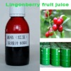 Lingonberry Concentrated Juice