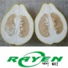 Shatian Pomelo