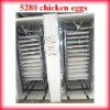 Holding 5280 eggs Full Automatic incubators for hatching eggs