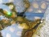 waterproof green laser pointers