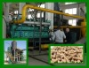 Wood gasification system
