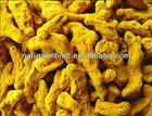 100% natural Curcumin Powder Extracts