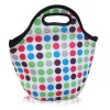2012 Fashion Design Neoprene Insulated Lunch Bags/Lunch Box Bags,with Zipper and Handle