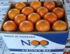 High quality Newhall Navel Orange With Good Price