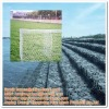 Economy Gabion Box Supplier