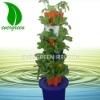 Bucket hydroponic system