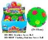 Rainbow soccer puffer ball