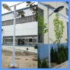 Single Arm Solar Street Lamp