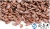 organic linseed/flax seed oil seeds