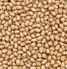 Baisha Peanuts